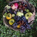 Amo l'autunno e la torta di fichi freschi (senza glutine)